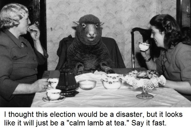 lamb-meme