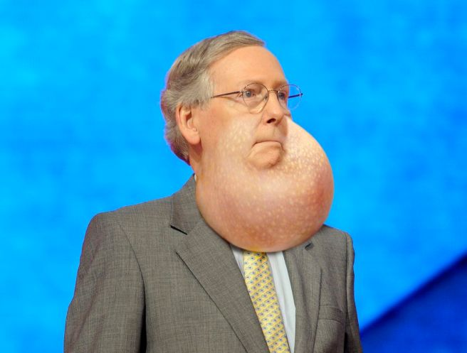mcconnell-throat-pouch