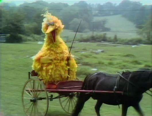 PBS Big Bird