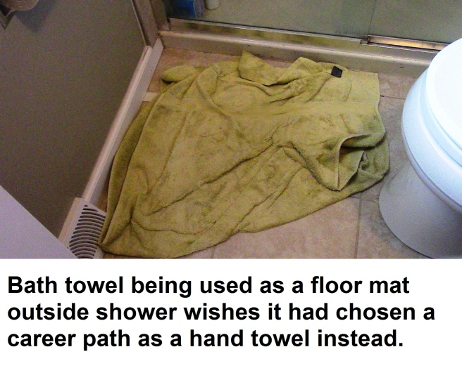 Towel Career