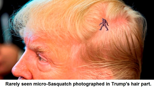 trump scalp crop with sasquatch
