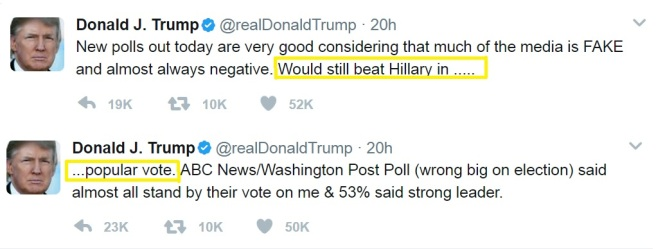 Trump Tweet Popular Vote