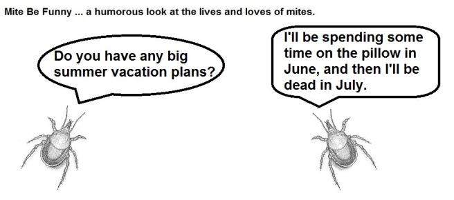 Mite Be Funny #12 Summer Vacation