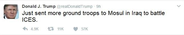 Trump tweet ICES