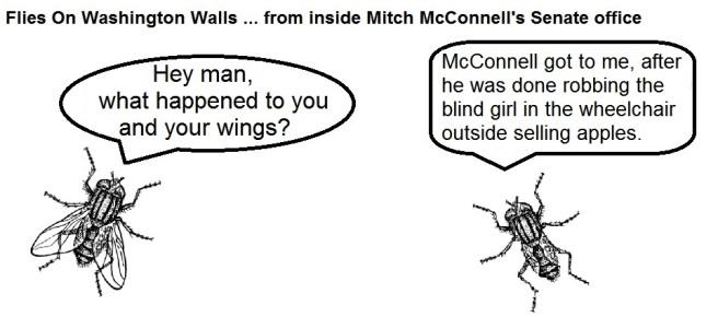 FOWW #2 Wings