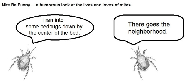 Mite Be Funny #13 Bedbugs