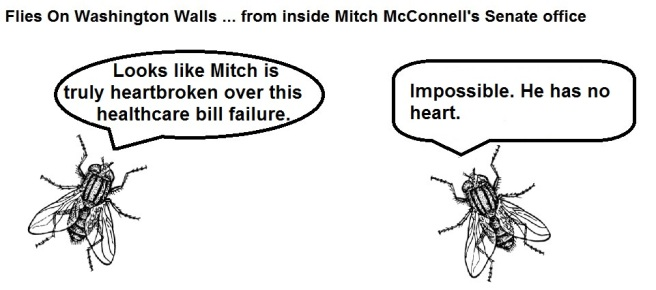 FOWW #14 McConnell Heart