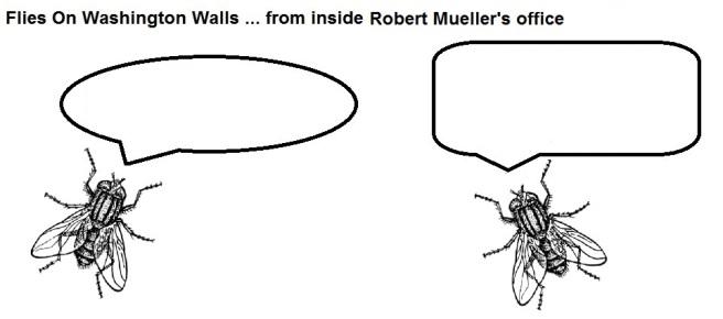 FOWW #9 Mueller Silence