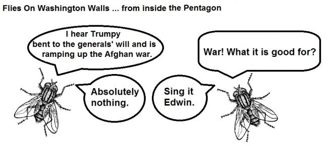 FOWW #30 War