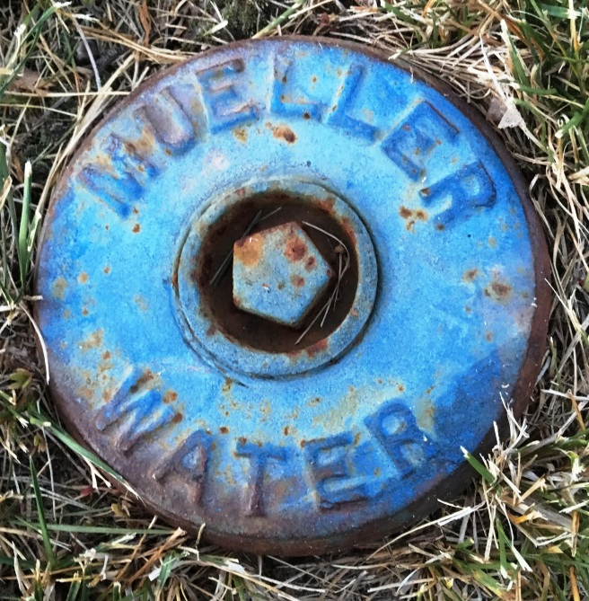 Mueller Water2