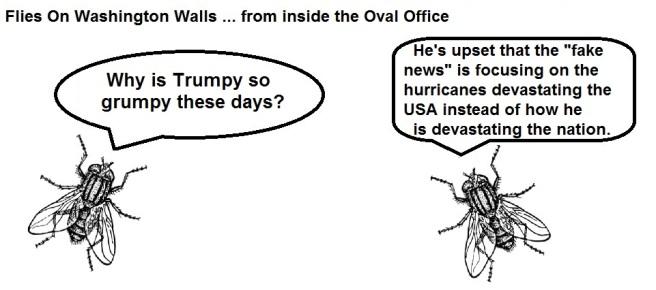 FOWW #36 Hurricanes