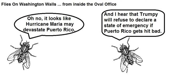 FOWW #41a Puerto Rico
