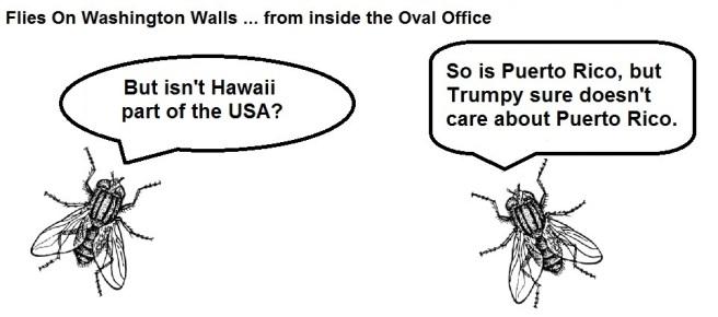 FOWW #51b Hawaii