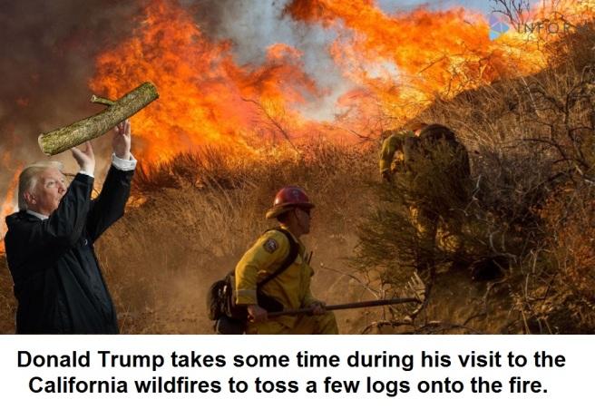 wildfire trump