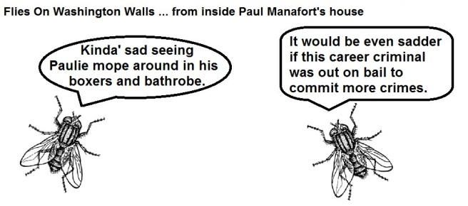 FOWW #56 Manafort Bail