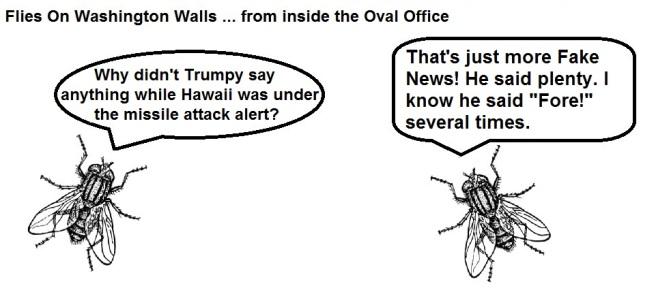 FOWW Blank #74 Hawaii
