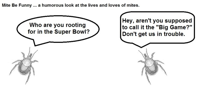 Mite Be Funny #52 Super Bowl a