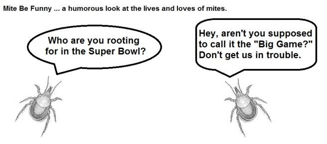 Mite Be Funny #52 Super Bowl a