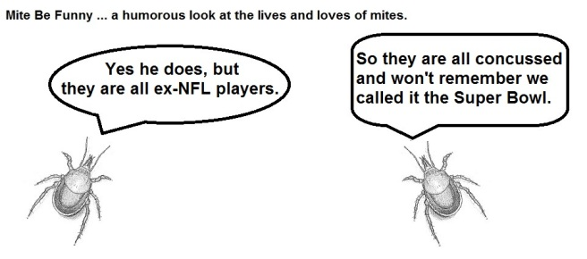 Mite Be Funny #52 Super Bowl c