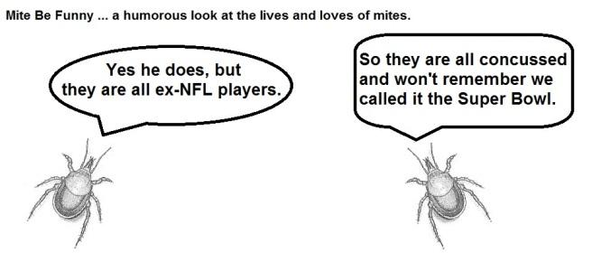Mite Be Funny #52 Super Bowl c