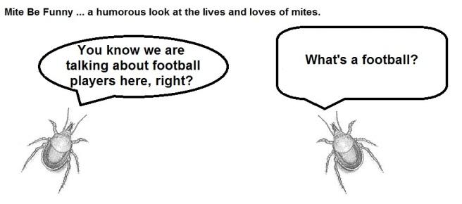 Mite Be Funny #52 Super Bowl f