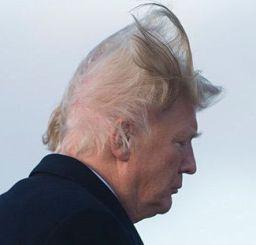 trump hair stairs