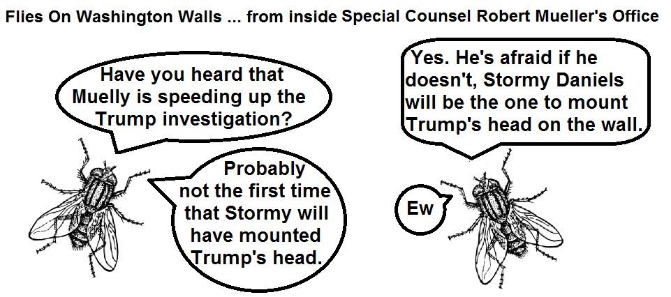FOWW #96 Mueller Stormy