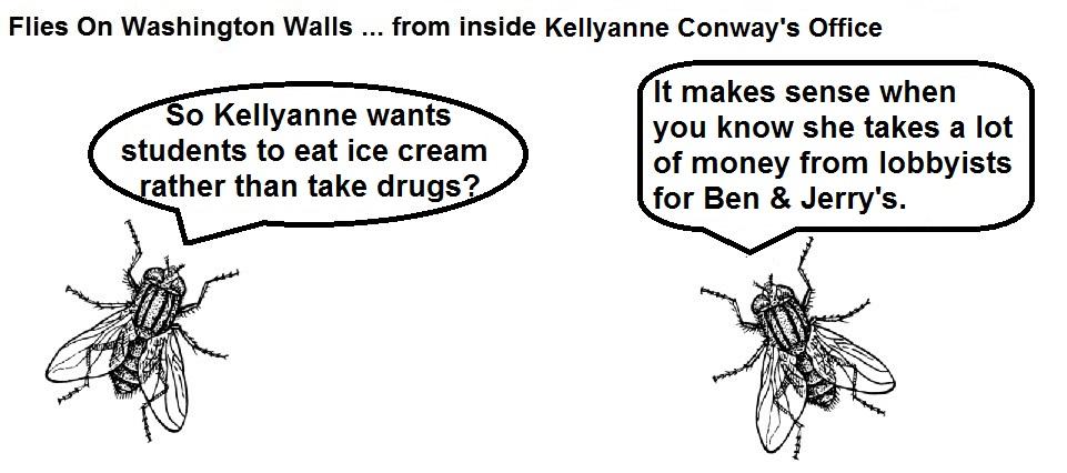 FOWW #97 Kellyanne Ice Cream