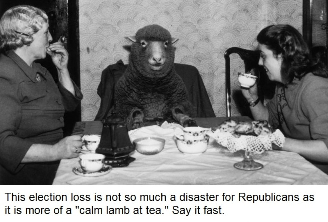 Lamb meme 2