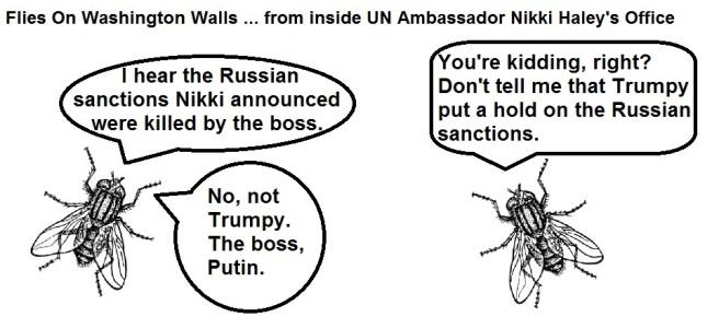 FOWW #104 Sanctions