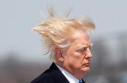 Trump Hair raising 1