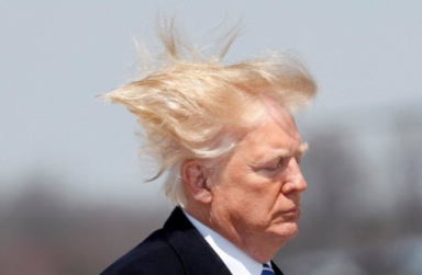 Trump Hair raising 1