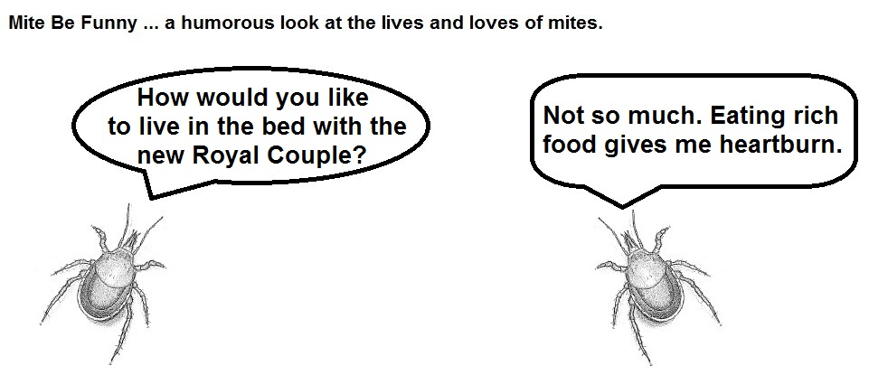 Mite Be Funny #68 Royal Couple