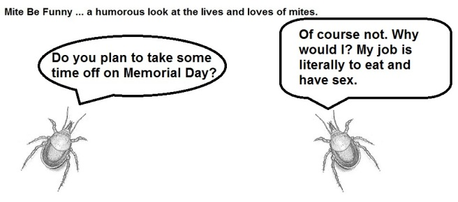 Mite Be Funny #69a Memorial Day