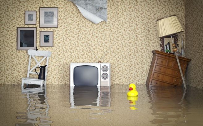 flooded room.jpg