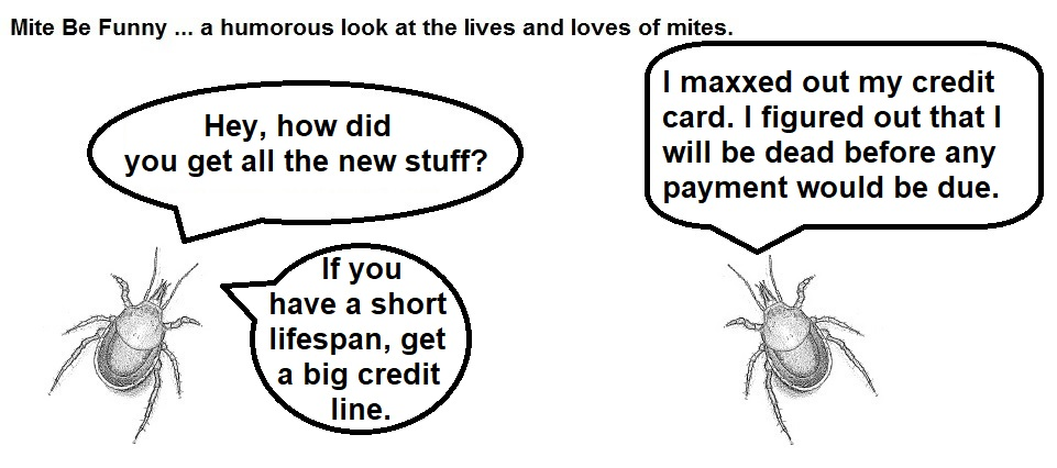 Mite Be Funny #73 Credit Card