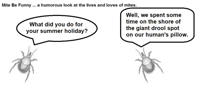 Mite Be Funny #76 Summer Holiday