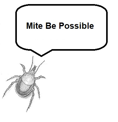 Mite Be Possible