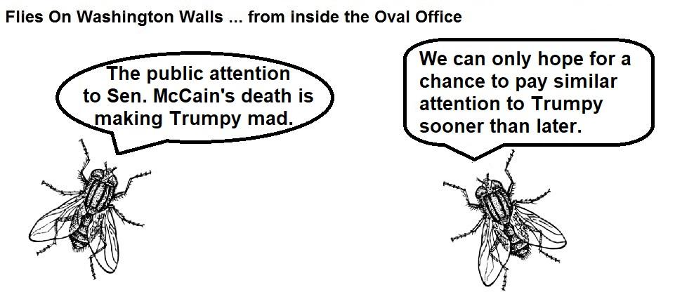 FOWW Blank #123 McCain Death