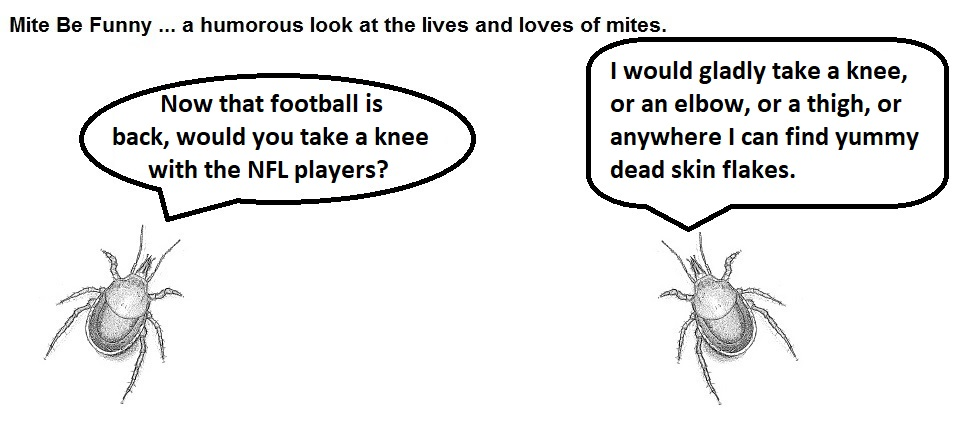 Mite Be Funny #79 NFL Take a Knee