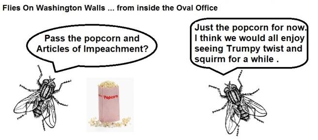 FOWW #132b Popcorn