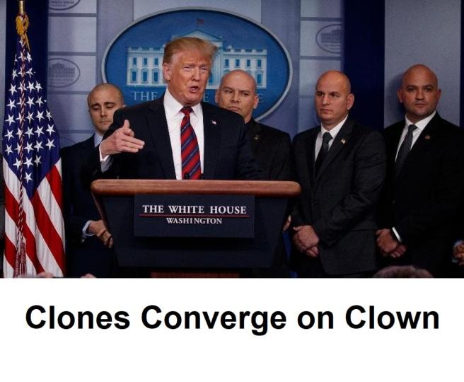 bald clones2
