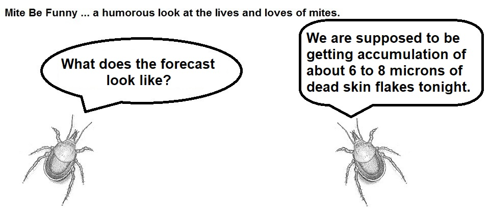 mite be funny #101a forecast