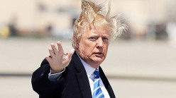 Trump hair wilda