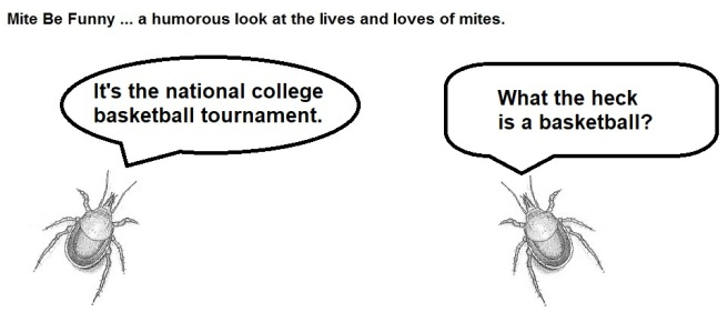 Mite Be Funny #108b March Madness