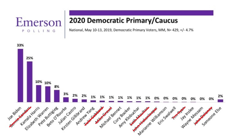 Democratic Poll 5-19