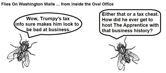 FOWW #152a Taxes
