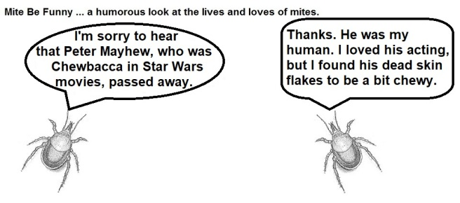 Mite Be Funny RIP Chewbacca