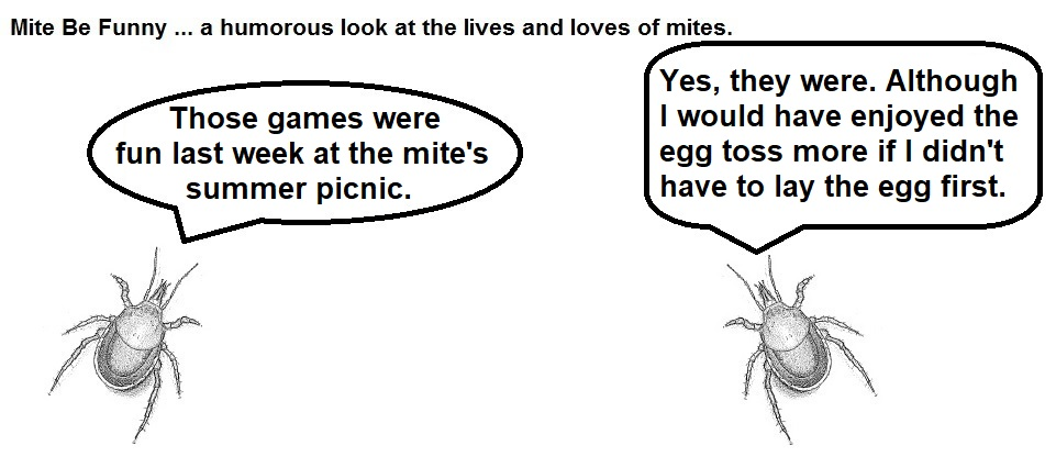 Mite Be Funny #123 Picnic Games Part 2.jpg