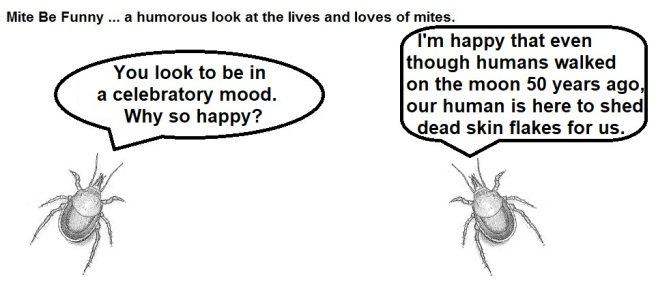 Mite Be Funny #126a Moon